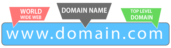 Domain Services - Boon to the Internet - ServerCake India