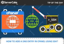 Adding DNS entry using SSH