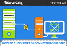 Check Port 80 Connections
