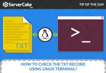 TXT Record Linux Terminal