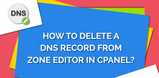 Delete DNS record from Zone Editor