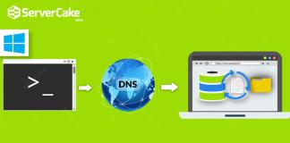 Clear DNS cache