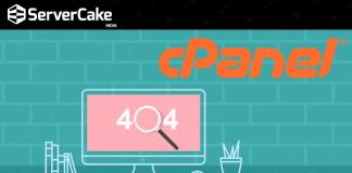 cPanel error page