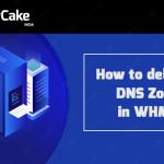 DNS Zone
