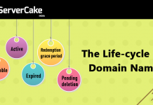 Domain Name Life Cycle