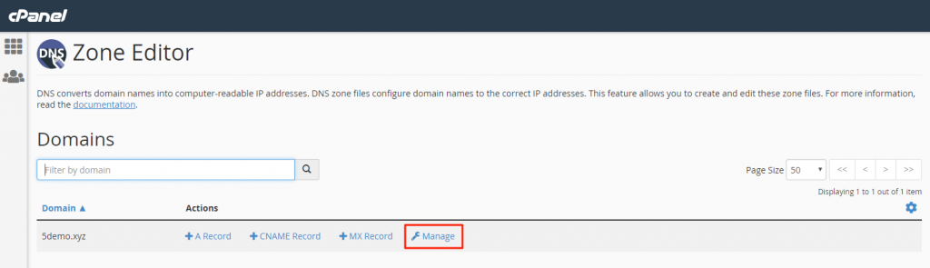 Click the option Manage to handle DNS record