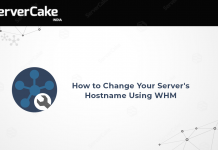 Hostname-using-WHM