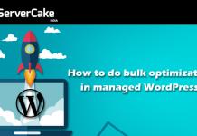 optimization-wordpress